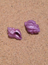 Painted Shell (small)