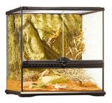 Terrarium complet arrière plan inclus (45x45x45cm)
