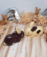 Kleiner Hase liegend braune Schoggi