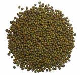 Mungbohnen grün