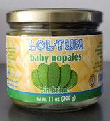 Baby Nopales en Salmuera  300 gr.