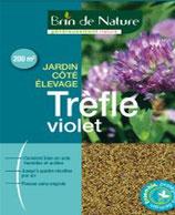 Trèfle violet 500g
