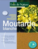 Moutarde blanche 500g