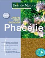 Phacélie 500g