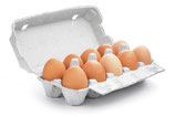 10 Eier im Karton