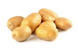 Kartoffeln mehlig kochend