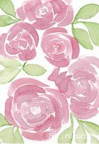 A28 -Rosen in Rosa - Postkarte