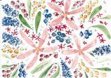 A27 -Flora und Beeren - Postkarte