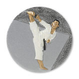 Emblem Karate 3D Resin 70mm