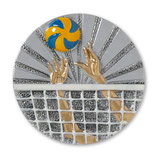 Emblem Volleyball 3D Resin 70mm
