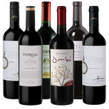 Südamerika Rotwein Probierpaket