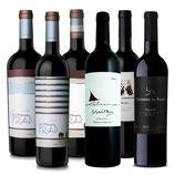 Malbec aus der neuen Welt Weinpaket