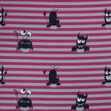 Sheldon, Nano Softshell, Monster, Streifen, Grau/Beere, Swafing