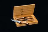 Steakmesser Set in dekorativer Holzkiste