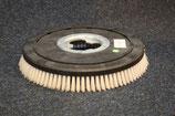 Schrubbürste für Bodenpflege - Maschine C 43