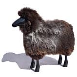 Schafe in Lebensgröße / Grau-Braunes Fell / Buche schwarz lackiert