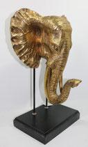 Elefanten - Kopf