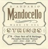 D'Addario Mandocello Phosphor Bronze, .022 - .074, J78