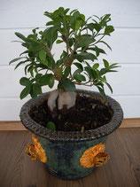 Blumentopf d-32 cm