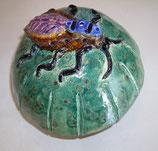 Pilz mit Käfer