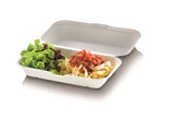 Food Box mit Klappdeckel extra groß 23.5 x 19.5 cm, 7.5 cm tief