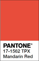 Shorts uni Mandarin-Rot von More than a fling (bis Grösse 158/164)