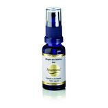 Neumond Parfüm Engel der Stärke bio 20 ml