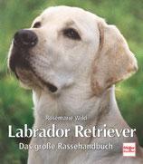 Wild Rosemarie, Labrador Retriever