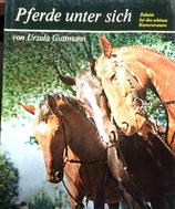 Guttmann Ursula, Pferde unter sich