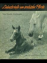 Guttmann Ursula, Liebesbriefe um arabische Pferde