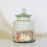Small Jar Filled with Shells