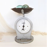 Grey Salter Scales Scales #5369