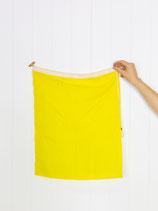 Signal Flag Q #6400