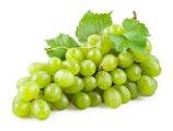 Traube Grün