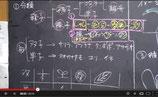 ◎中1理 植物・呪文授業
