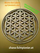 27 cm - Vollveredelt - Blume des Lebens