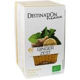 Tisane Ginger zest Bio