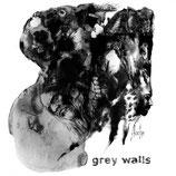Grey Walls LP Asche