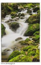 Faltkarte Natur 192