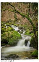 Faltkarte Natur 190
