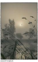 Faltkarte Natur 123