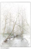 Faltkarte Natur 152