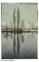 Faltkarte Natur 095