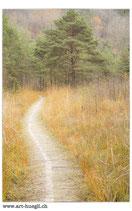 Faltkarte Natur 171