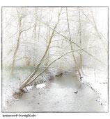 Faltkarte Natur 151