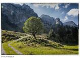 Faltkarte Natur 207