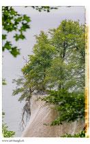 Faltkarte Natur 275