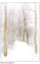 Faltkarte Natur 150
