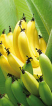 -50% Bananes séchées Madagascar 50g