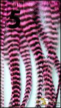5. Pink Panther BIG